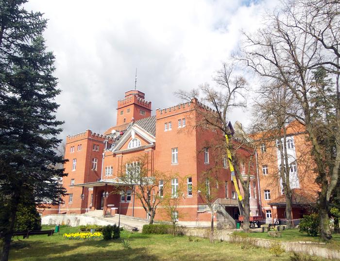 Ilustracja do informacji: Powiat Żarski inwestuje! Wymiana dachu na zabytkowym budynku Domu Pomocy Społecznej w Miłowicach