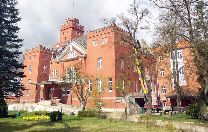 Ilustracja do informacji: Powiat Żarski inwestuje! Trwa wymiana dachu na zabytkowym budynku Domu Pomocy Społecznej w Miłowicach